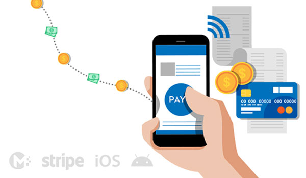 Accept Instant Mobile Payments